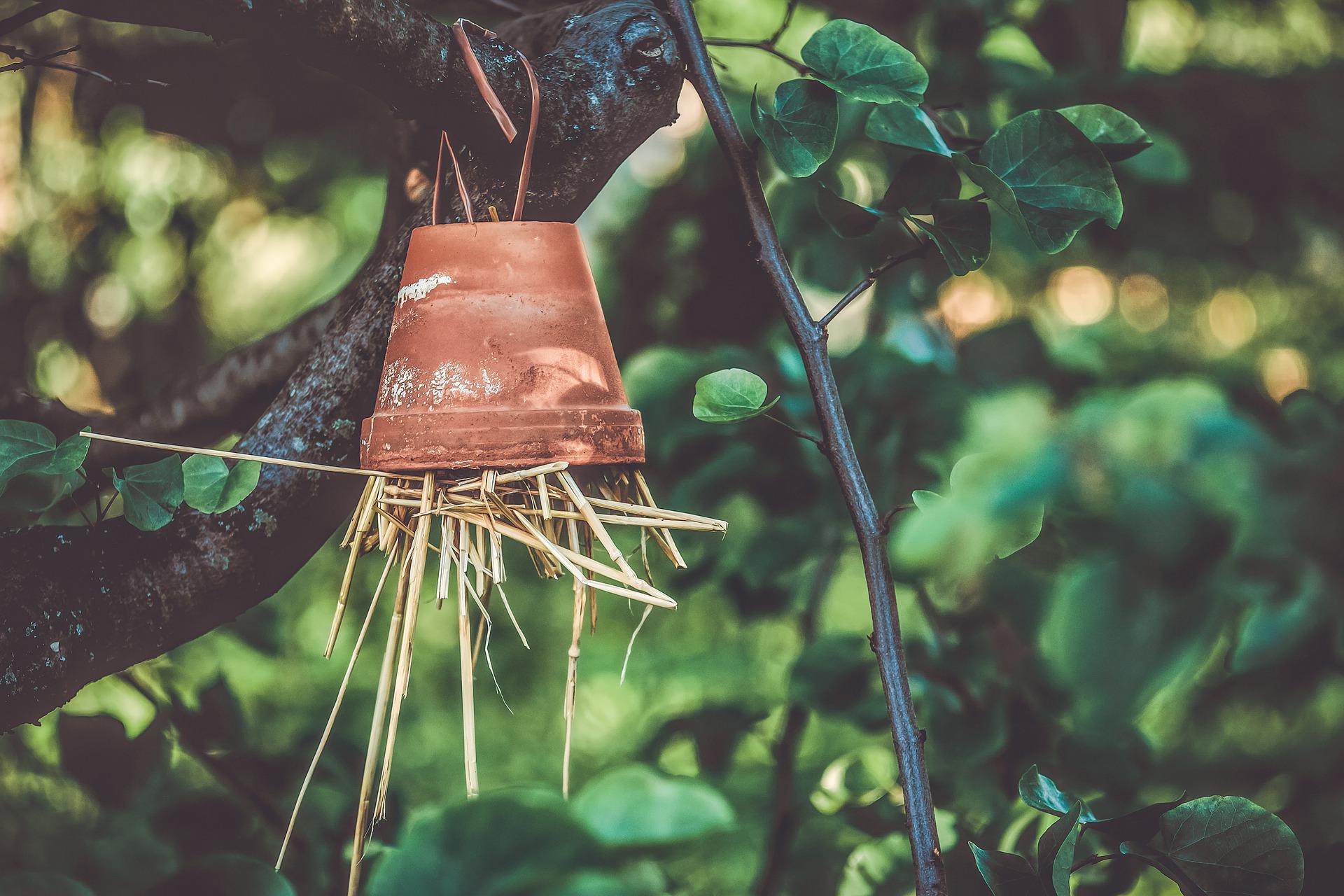FERIENSPASSAKTION mit dem BUND: Insektenquartier zum Aufhängen
