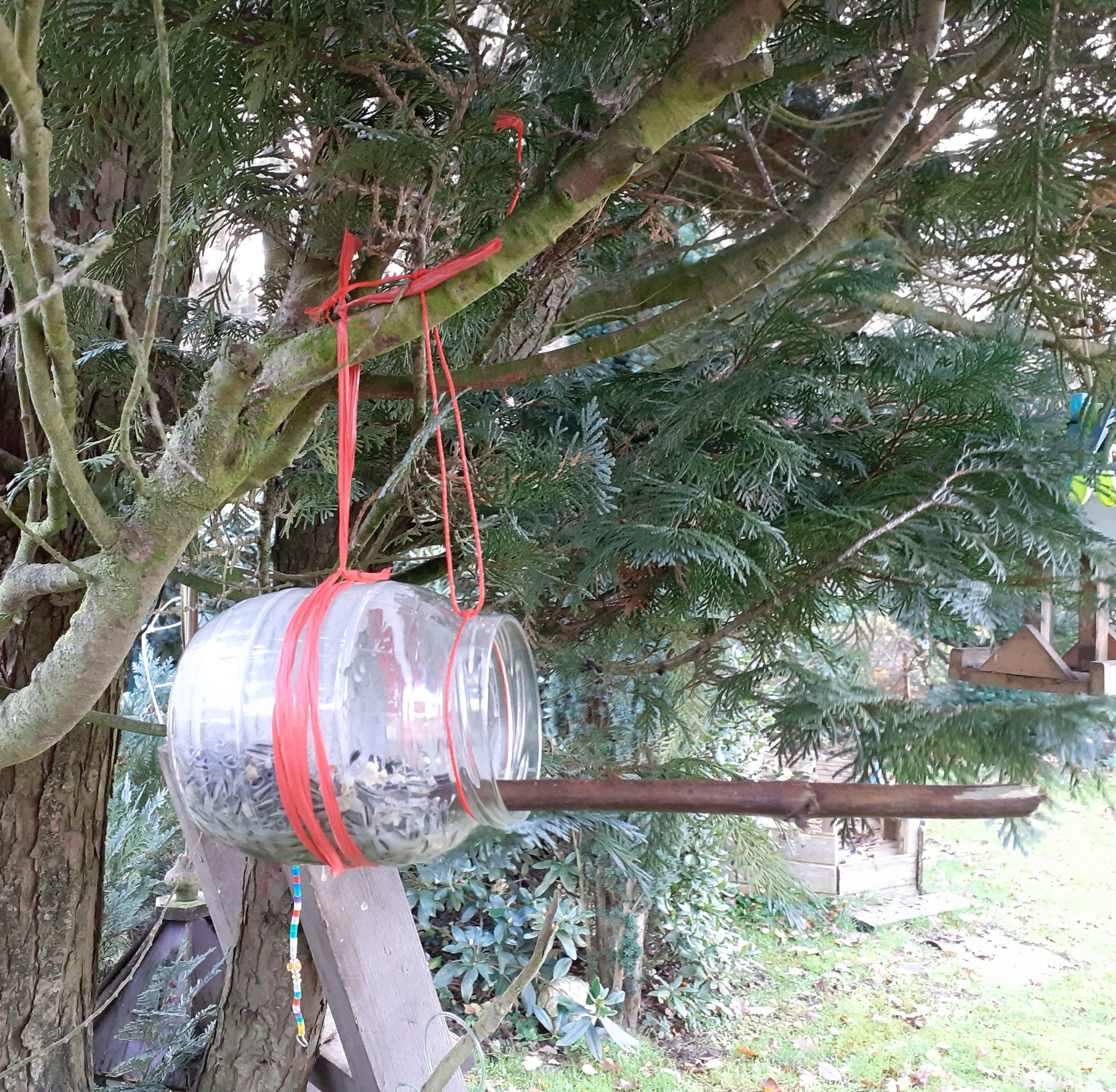 FERIENSPASSAKTION mit dem BUND: Vogelfutter selbstgemacht