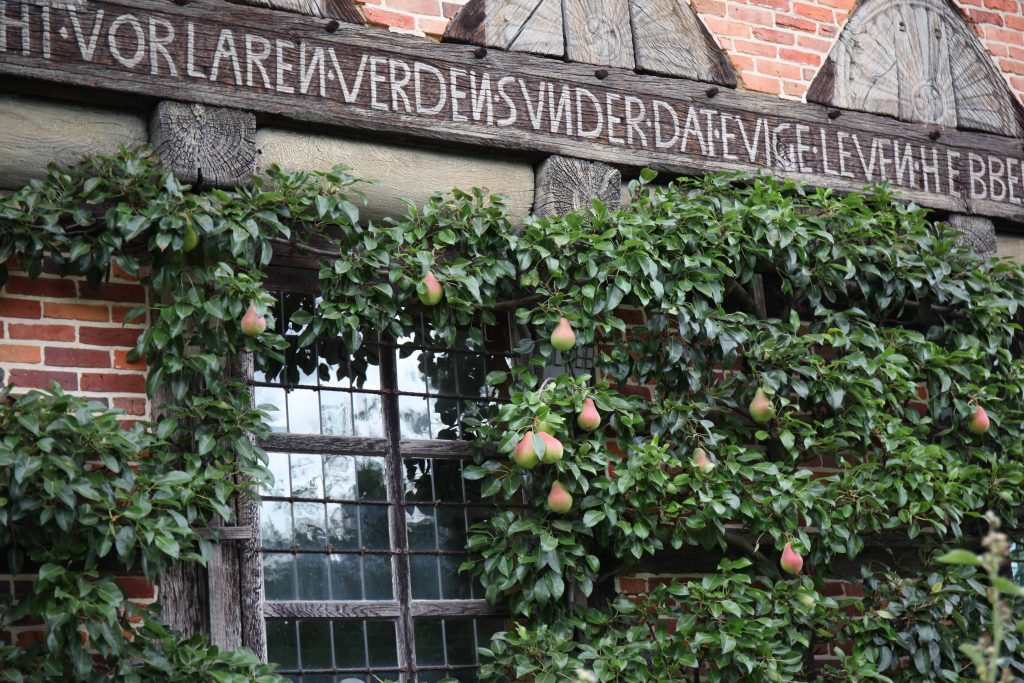 Spruchbalken Brümmerhof