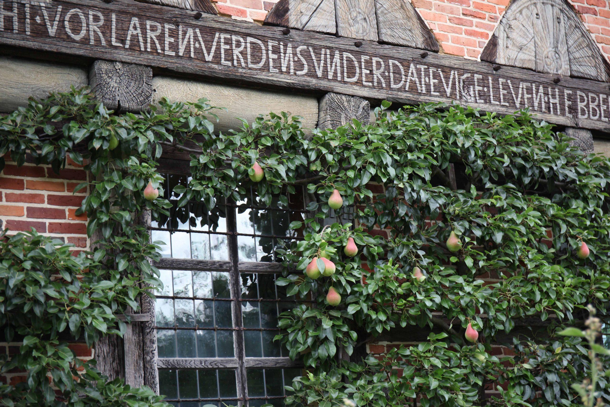 THEMENFÜHRUNG: Inschriften und Zeichen an historischen Gebäuden