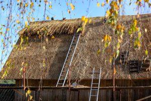 Backhaus10_web