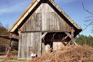 Backhaus9_web