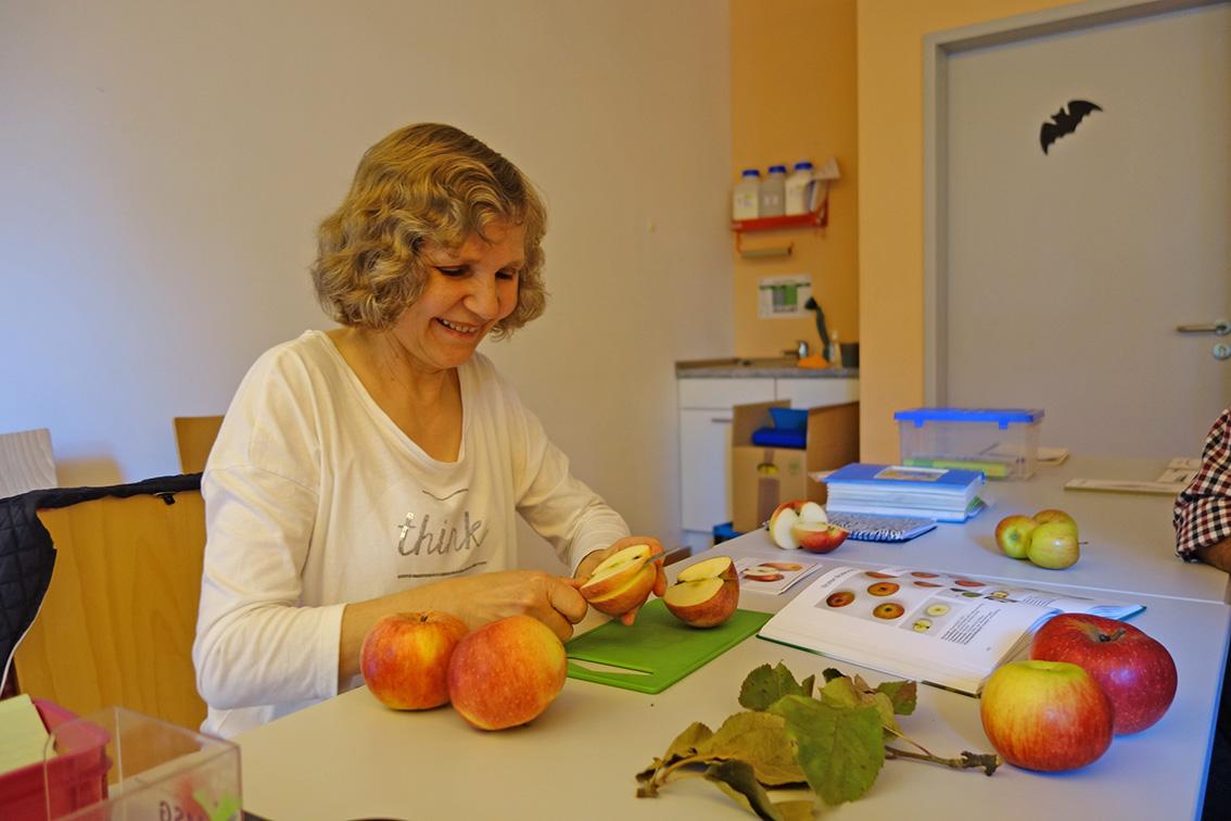 Apfelbestimmung