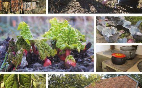 Gartenschwung mit Burkhard Bohne