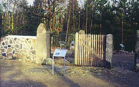 Natursteinmauer - Steinreiche Erde