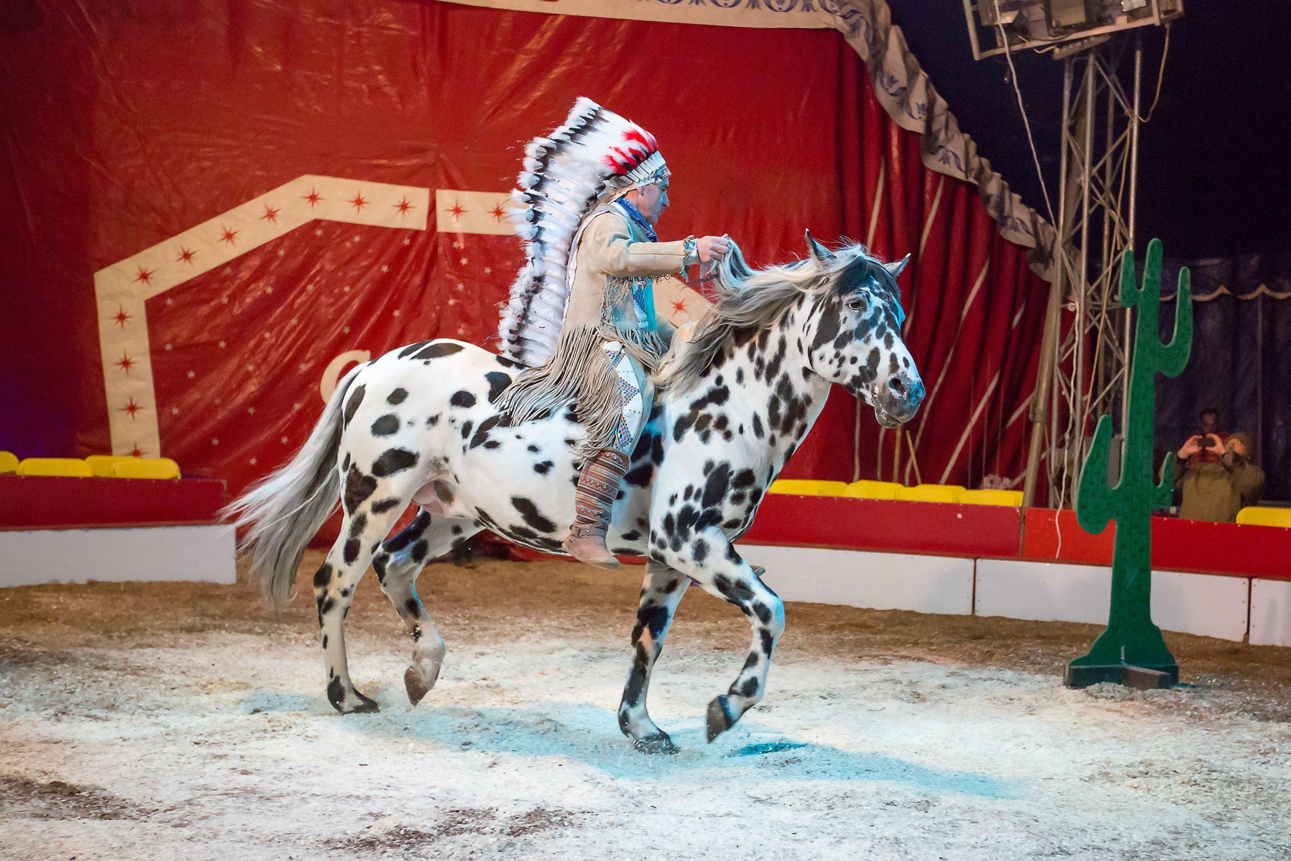 Freilichtarena: Indianer-Pferde-Show